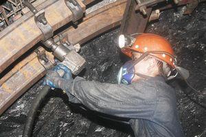 Quảng Ninh đẩy mạnh các giải pháp phòng ngừa tai nạn lao động