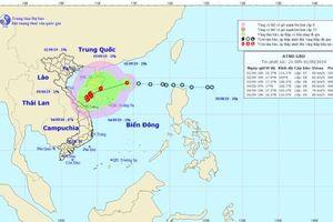 Áp thấp nhiệt đới sẽ thành bão số 5 trong 24 giờ tới