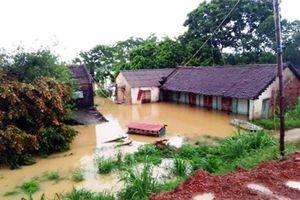 Các tỉnh ven biển chủ động ứng phó áp thấp nhiệt đới có thể mạnh lên thành bão