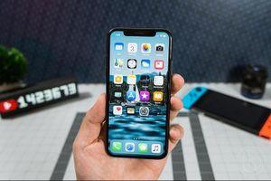 iPhone 11 sẽ được bán ra vào nửa cuối tháng 9