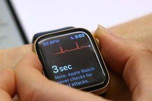 Apple cảnh báo và sửa miễn phí một số mẫu Apple Watch bị nứt màn hình