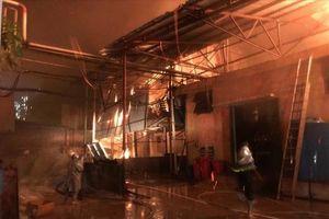 Cháy lớn 'làm khổ' Rạng Đông, 'trăn trở' với SIP...