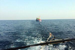 Cứu hộ thành công ngư dân gặp nạn trên biển ở Quảng Trị