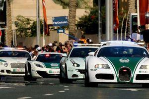 Bắt chước xe cảnh sát Dubai ô tô Việt sẽ không được đăng kiểm