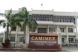 Hậu kiểm toán, lợi nhuận Camimex giảm 24 tỷ đồng