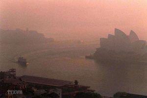 Australia tuyên bố tình trạng khẩn cấp y tế do biến đổi khí hậu
