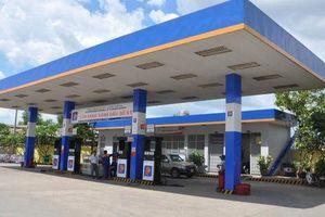 'Đại gia xăng dầu' Petrolimex bị cho rằng lập dự phòng giảm giá hàng tồn kho chưa phù hợp với chuẩn mực kế toán