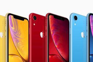 Japan Display: Dây chuyền sản xuất màn OLED cho iPhone cần 2 năm nữa mới ổn định