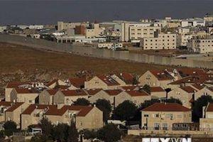 Palestine lên án động thái mới của Mỹ liên quan đến Jerusalem
