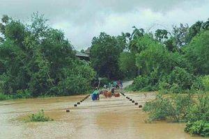 8 người lên rừng hái lá nón bị mất liên lạc do mưa lũ