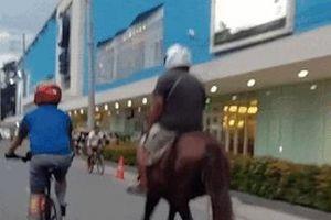 Người đàn ông cưỡi ngựa giữa đường đông xe qua lại