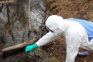 Tổ chức Y tế Thế giới cảnh báo gì về nhiễm độc thủy ngân?