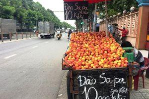 Đào, nho, mận Trung Quốc gắn mác Việt bày bán tràn ngập nhiều đường phố Sài Thành