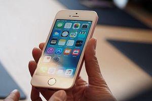 iPhone SE 2 ra mắt đầu năm 2020