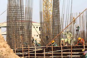 Gói thầu xây Trường tiểu học tại Phú Tân, An Giang: 6 nhà thầu cạnh tranh