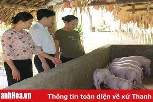 Agribank Thanh Hóa tập trung cho vay đầu tư phát triển nông nghiệp, nông thôn