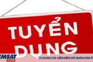 VKSND tỉnh Nghệ An thông báo tuyển dụng kế toán