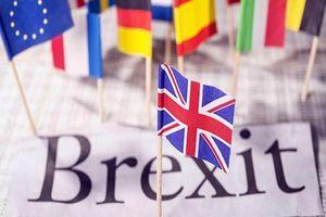 Anh công bố cơ chế TLR cho công dân EU