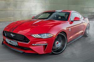 Wolf Racing với dự án xe cơ bắp Ford Mustang 'One of 7'
