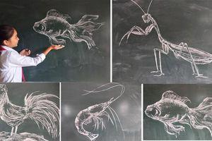 Hút mắt tranh vẽ con vật bằng phấn của thầy giáo 8X