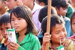 Sắp ban hành Thông tư sữa học đường