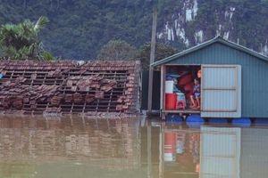 Những căn nhà 'biết bơi' giúp người dân vùng lũ Quảng Bình
