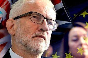 Các nghị sĩ Anh chuẩn bị nhờ tòa án trì hoãn Brexit