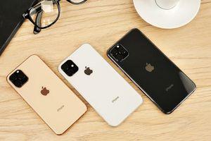 iPhone 11 có mặt tại Việt Nam ngày 20.9, giá từ 30 triệu đồng?