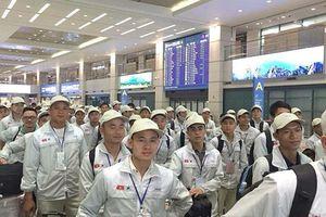 Lao động Việt Nam tại Hàn Quốc không về nước đúng hạn giảm mạnh