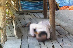 Phát hiện thi thể bị cắm dao trong quán nước bỏ hoang ở Nha Trang