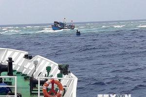 Khánh Hòa: Bàn giao 41 ngư dân Quảng Nam được cứu hộ trên biển