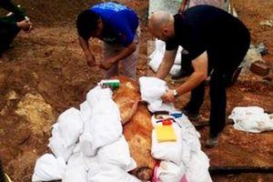 Quảng Bình: Phát hiện quả bom 'khủng' còn sót lại sau chiến tranh