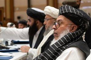 Taliban chỉ cho Mỹ thấy thiệt hại khi hủy đàm phán