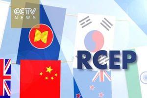 Đàm phán về RCEP có thể kết thúc cuối năm 2019