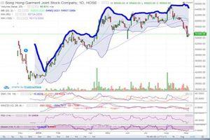 Cổ phiếu MSH sẽ tiếp tục phục hồi?