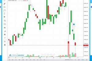 Cẩn trọng 'bắt đáy' cổ phiếu RAL