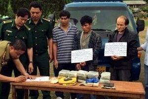 Chủ động phòng ngừa, tăng cường hợp tác đấu tranh với tội phạm ma túy