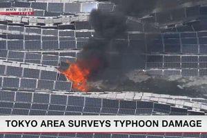 Nhà máy điện mặt trời lớn nhất Nhật Bản bốc cháy