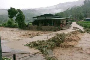 Tuyên Quang: Mưa gây thiệt hại lớn tại huyện Na Hang