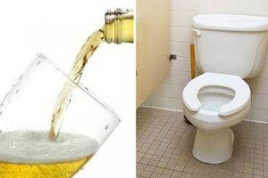 Đổ 1 cốc bia vào nhà vệ sinh, bạn sẽ phát hiện ra điều bất ngờ chưa từng thấy