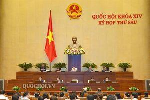 Đbqh thạch phước bình: chất vấn bộ trưởng bộ kh&cn về quy trình công nhận nhãn hiệu, bản quyền sáng chế