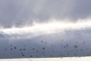 Kinh ngạc hiện tượng sóng thần tuyết 'ma' hiếm gặp đầy ngoạn mục