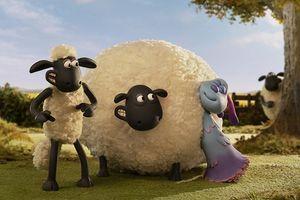 Được yêu mến nồng nhiệt, 'Shaun The Sheep' sắp có phần 2