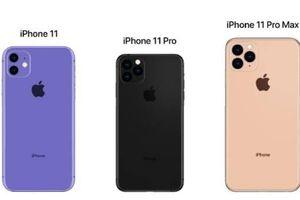 Apple ra iPhone 11: Thiết kế không có nhiều thay đổi, tín đồ không hào hứng