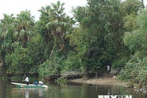 Video truy tìm cá sấu nặng 50kg trên sông Cầu Đông ở Hà Tĩnh