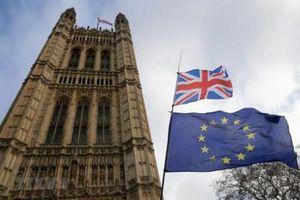 Hà Lan được hưởng lợi từ 'hiệu ứng Brexit'