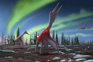 Phát hiện loài thằn lằn cổ đại to như máy bay