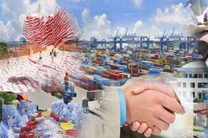 Doanh nghiệp Việt thận trọng khi 'làm ăn' với công ty của Maroc