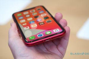 Trên tay iPhone 11: Phiên bản giá rẻ nhưng... không rẻ