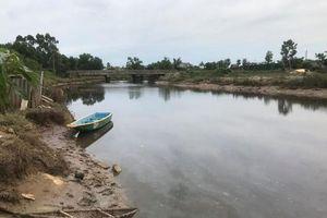 Hà Tĩnh: Hoảng hồn phát hiện cá sấu dưới sông Cầu Đông